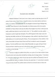 scarlet letter three scaffold scenes essay dissertation   apology letter essays and papers 123helpme