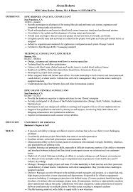 Epic Consultant Resume Sample Templates Staggering Live In Elderly