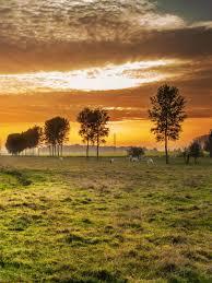 landscape nature sunset clouds mobile wallpaper