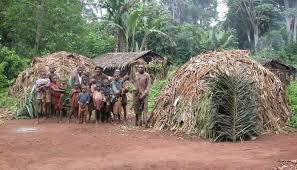 (Vidéo) : la mort à petit feu des pygmées Baka, victimes de la déforestation au Cameroun