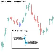 What Is A Price Chart Trendspiders Raindrop Charts Combine Price Volume To