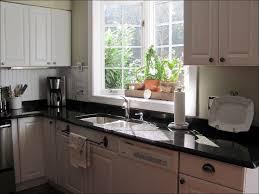 Kitchen Garden Window Kitchen Replacing A Garden Window With A Regular Window Kitchen