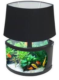 Charming Lector Could Move To Your Bedside Unique Fish Tanks, Cool Fish Tanks,  Aquarium Terrarium