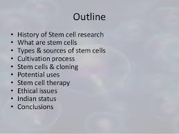 stem cell research essay introduction < homework writing service stem cell research essay introduction