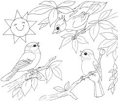 Coloriages Oiseaux Les Animaux