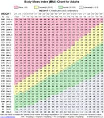What Is The Body Mass Index Monlab