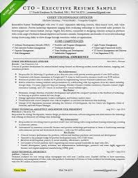 Cio Sample Resume Impressive Cto Resume Example Theaileneco