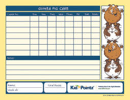 Kids Pet Care Charts Caring For A Guinea Pig Kid Pointz