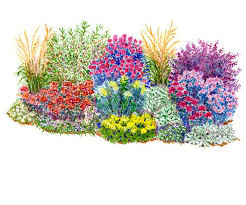 flower garden plans. Drought-Resistant Garden Flower Plans Better Homes And Gardens