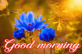 today good morning images wallpaper pics for facebook