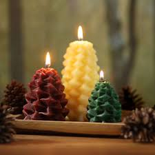 Pine Cone Candles Beeswax Pinecone Candles Eartheasycom