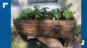 how to grow your own food during the