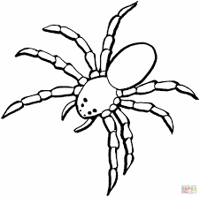Small Picture Free Spider Coloring Pages Printable Spider Coloring Pages For