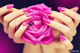 Fotografie Obraz Elegantní ženské Ruce S Růžovým Manikúra Na Nehty