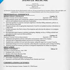 Resume Customer Service Sample Sample Resume Insurance Customer Service Representative Best 19