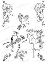Small Picture Image result for bird house coloring pages RISCO PARA PINTAR E