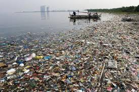Kuvahaun tulos haulle muovia meressä