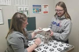 Walmart Awards Grant to Wyoming County SPCA | Community | gvpennysaver.com