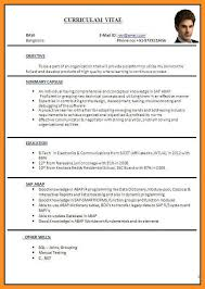 Curriculum Vitae Example Beauteous 4848 Sample Format Of Curriculum Vitae Wear48