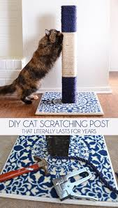 Diy Cat Scratching Post That Literally Lasts For Years Dream A Little Bigger