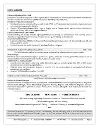 Business Operations Executive Resume Sample