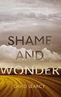 shame and wonder essays by david searcy shame and wonder