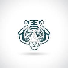 Obraz Tiger Portrét