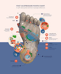 Foot Pressure Points Online Charts Collection