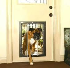 large doggie door spectacular extra large dog door for sliding glass door good ideas sliding doors