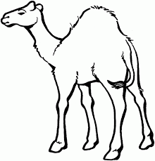 Small Picture coloring book pages camels Home Animals Camel egyptian