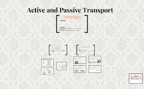 Venn Diagram Of Diffusion Osmosis And Active Transport Active And Passive Transport By Ryan Brown Ezell On Prezi