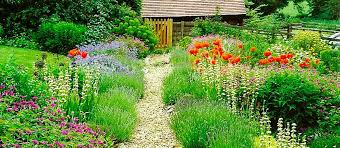 Small Picture Babylon Design Garden Designers and Garden planting Oxfordshire