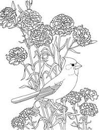 Small Picture Free Printable Coloring PageVirginia State Bird and Flower