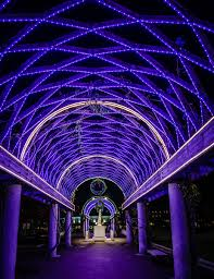 trellis lighting. Wonderful Lighting Looking Up At The Blue Lights On Christopher Columbus Park Trellis To Trellis Lighting