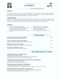 Professional Summary For Resume No Work Experience Resume With No Work History Englishor Com