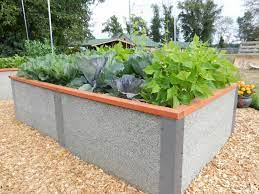our 4 x8 x2 tall raised garden bed kit