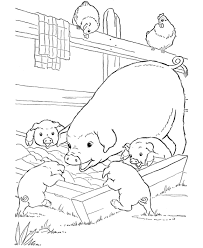Small Picture Baby Pig Coloring Sheets Pig Coloring Pages Preschool Farm Pig
