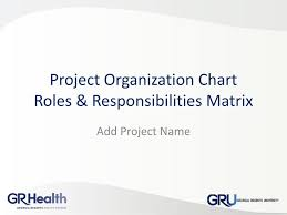 Ppt Project Organization Chart Roles Responsibilities