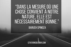 Citation De Spinoza Sur La Natureles Meilleures Citations Du Web