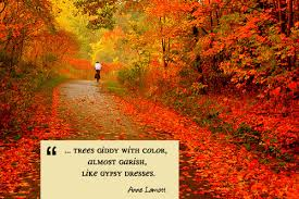 Autumn Quotes Stunning A Quote For Today Autumn Living Vintage