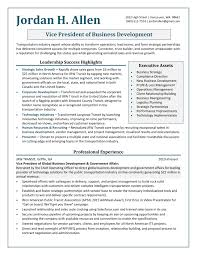 Information Technology Resume Sample Sample Resume Vice President Information Technology Fresh Vice 53