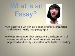 essay writing for intermediate to advanced level students what is an essay