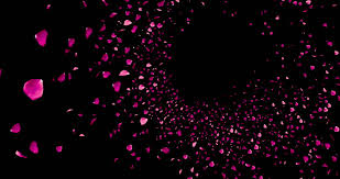 Cool Pink And Black Background 3d Animation Pink And Violet Stock Footage Video 100 Royalty Free