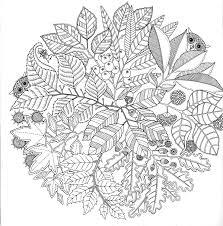 Jardin Secret Carnet De Coloriage Et Chasse Au Tr Sor Anti Stress