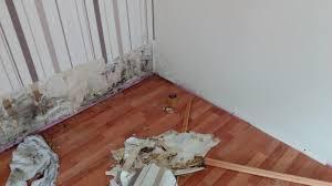 Muffiger Geruch Im Schlafzimmer Modern Schlafzimmer Komplett