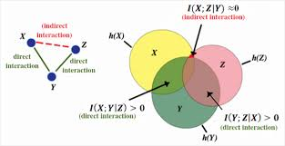 Mutual Information Venn Diagram An Information Theory Based Thermometer To Uncover Bridge Defects