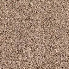 carpet z bar home depot. legends lane i - color winter leaf texture 12 ft. the home depot carpet z bar o
