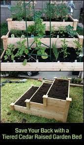 diy raised garden