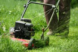 a push lawn mower may be used to cleaning up areas surrounding a garden