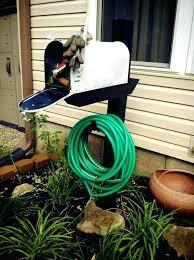 hose storage garden hose storage ideas hose caddy